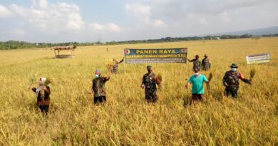 Wujudkan Ketahanan Pangan Saat Pandemi Covid-19 Di Tuban
